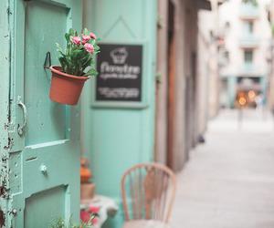 shop, door, and green image