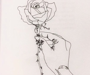 drawing, rose, and flower image