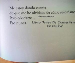 amor, frases de amor, and frases en español image
