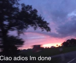 Lyrics, trees, and Road Trip image