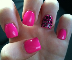 cheetah, pink, and nails image