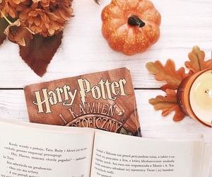 pumpkin, book, and fall image