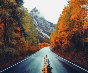 autumn, article, and fall image