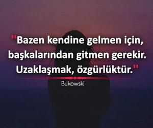 bukovski and türkçe sözler image