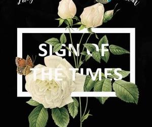 Harry Styles, flowers, and Lyrics image