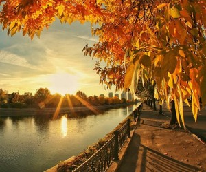 autumn, sunset, and view image