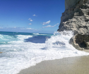 beach, beautiful, and reef image