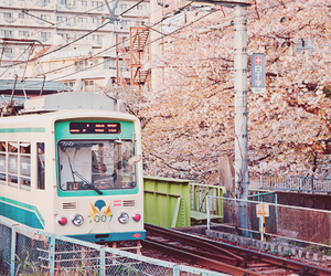 japan, train, and sakura image