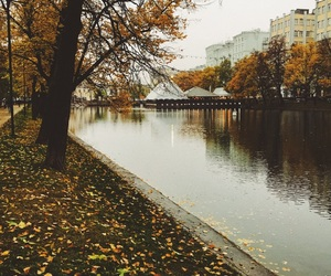 autumn, foliage, and moscow image