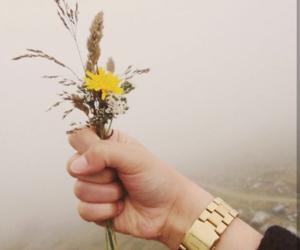 austria, beautiful, and mist image