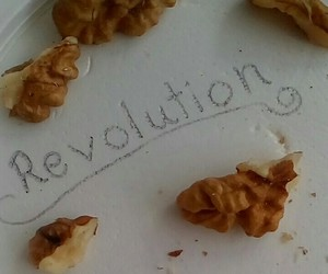 everyone, revolution, and everything image