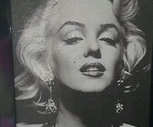 fancy, monroe, and marilyn image