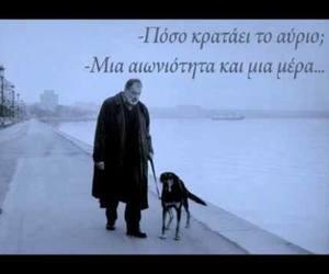 blue, dog, and Greece image