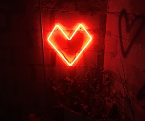 aesthetic, neon, and neon sign image