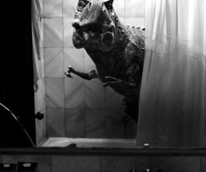 dinosaur, black and white, and t-rex image