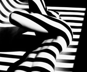 black and white, body, and stripes image