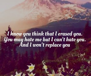 hate, i, and paramore image