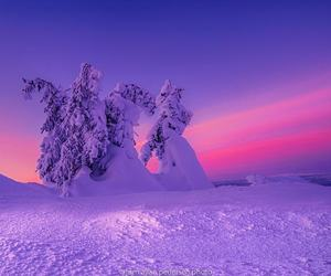 beautiful, ice, and purple image