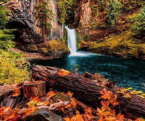 nature, autumn, and waterfall image