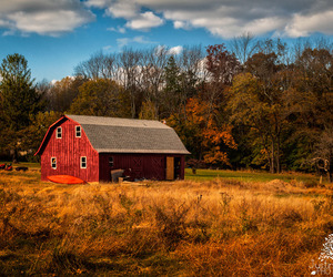 barn, country living, and farm image