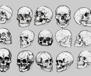 skull and black image