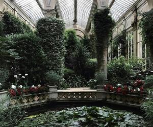 flower, garden, and pond image