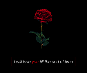 end, lyric, and till image