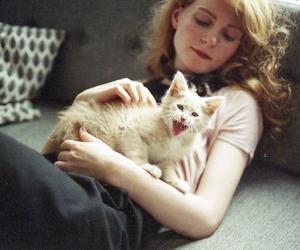 cat, alternative, and vintage image