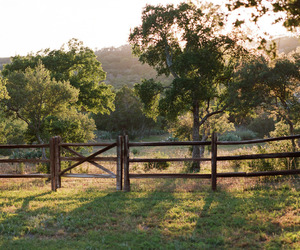 country living, farm, and pasture image