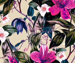 antique, background, and botanical image