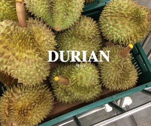 fruit, exotic, and durian image