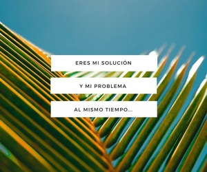 colorful, frase, and quote image