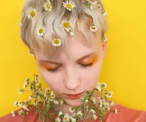 yellow and daisies image