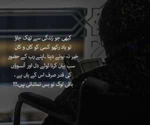 pakistan, qoute, and urdu image