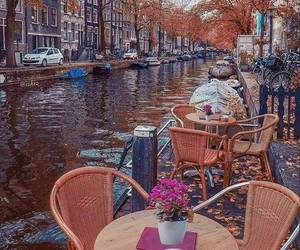 amsterdam, travel, and autumn image