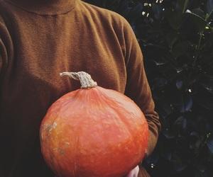 girl, pumpkin, and sweather image