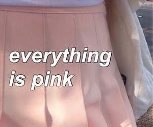 aesthetic, pink, and pink skirt image