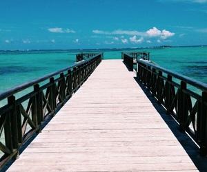 beach, paradise, and bora bora image