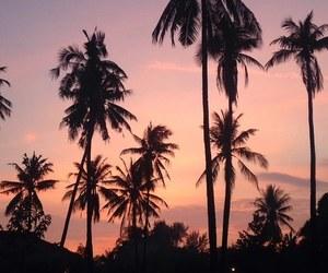 bali, nature, and pink image