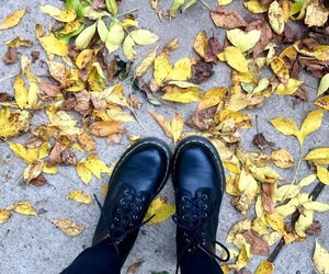 aesthetic, autumn, and black image