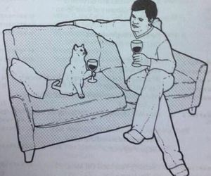 cat, lol, and cursed image image