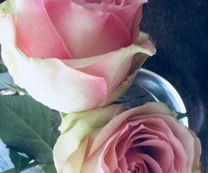 flowers, grunge, and melancholia image