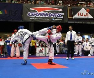 fight, ireland, and taekwondo image