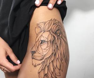 fashion, leg, and lion image