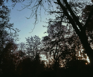 autumn, cold, and blue image