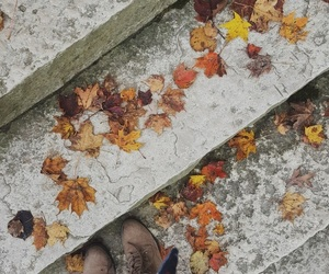 autumn, books, and boots image