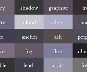 grey and shades image