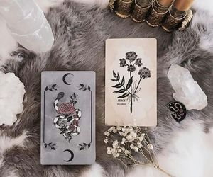cards, hide, and magic image