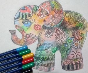 elefante, elephant, and mandala image