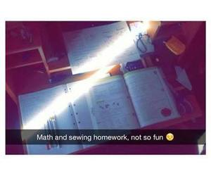 fml, homework, and maths image